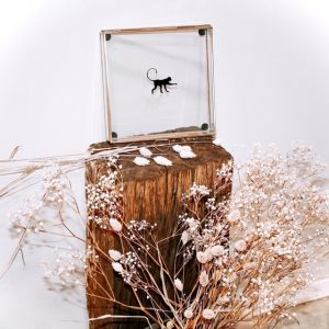 glazenbox voor sieraden